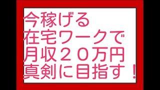 在宅ワーク高収入求人月収20万円稼ぐ為の手法をそれぞれ説明してみた!