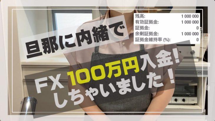 【100万円入金】主婦が旦那に内緒で自動売買FXに100万投資。
