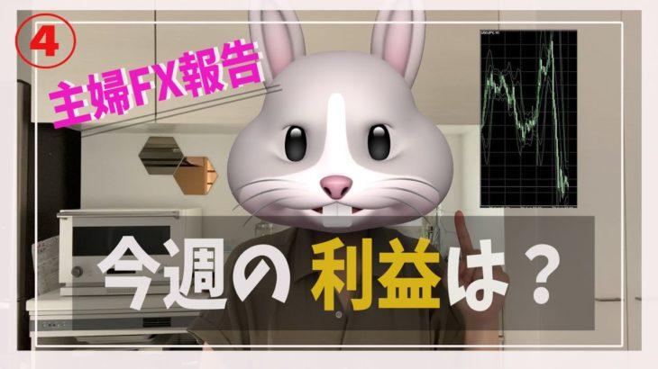 【主婦FX】自動売買FXの週間報告します(^^)/