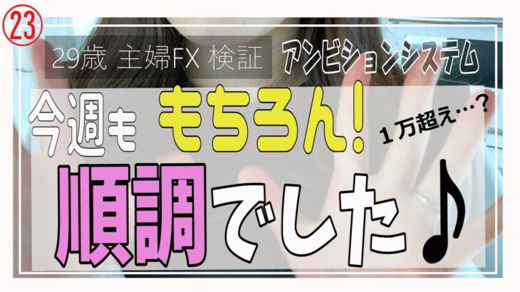 【主婦FX】第23回!アンビションシステム検証報告♪最近順調(^^)/